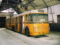 Ex-Milan Trolleybus, La Spezia Unofficial Bus and Trolleybus Museum